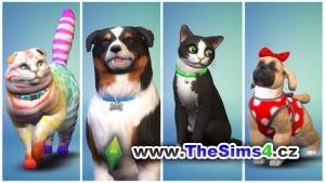 Rozšíření Psi a kočky